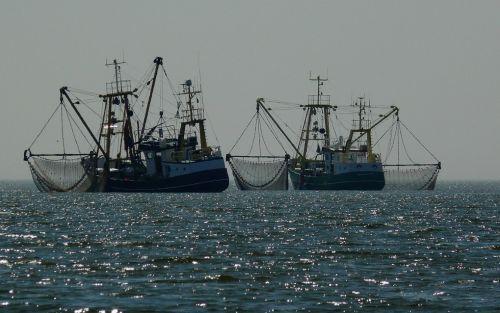 El Gobierno impulsa la renovación de la flota pesquera de todo el país