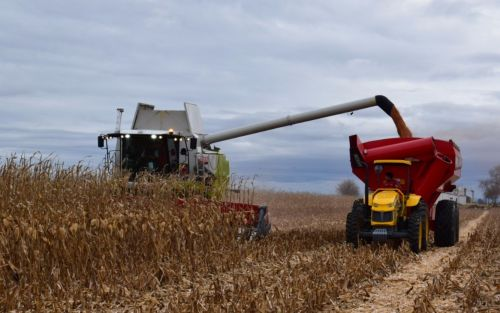 """Un organismo internacional criticó por """"distorsivas"""" las políticas de Argentina para el agro"""