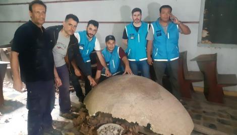 Recuperaron los restos fósiles de un gliptodonte valuado en $3 millones