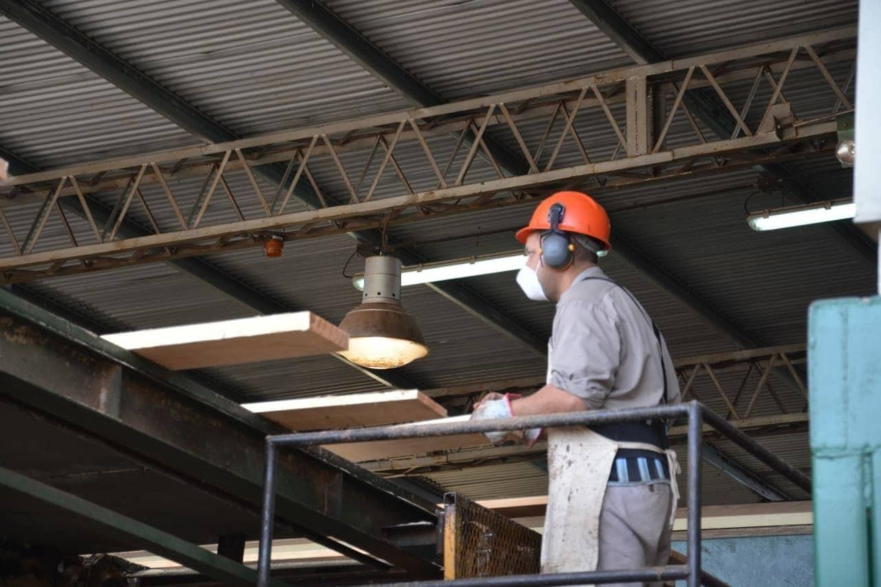 provincia-ofrece-creditos-de-hasta-10-millones-de-pesos-para-pymes-forestoindustriales